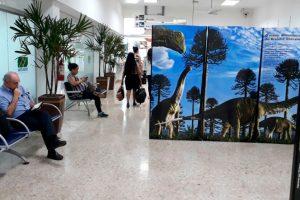 """Aeroporto de Uberaba recebe exposição """"Yes, Nós Temos Dinossauros"""""""